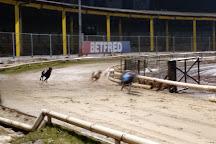 Owlerton Greyhound Stadium, Sheffield, United Kingdom