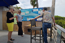 Dolphin Connection, Duck Key, United States
