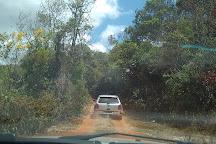 Sitio Arqueologico da Pedra Pintada, Barao De Cocais, Brazil