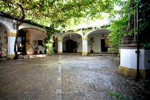 Bodegas Tradicion, Jerez De La Frontera, Spain