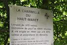 Charmille of Haut-Maret