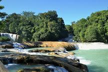 Agua Azul Waterfalls, Palenque, Mexico