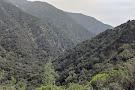 Big Santa Anita Canyon