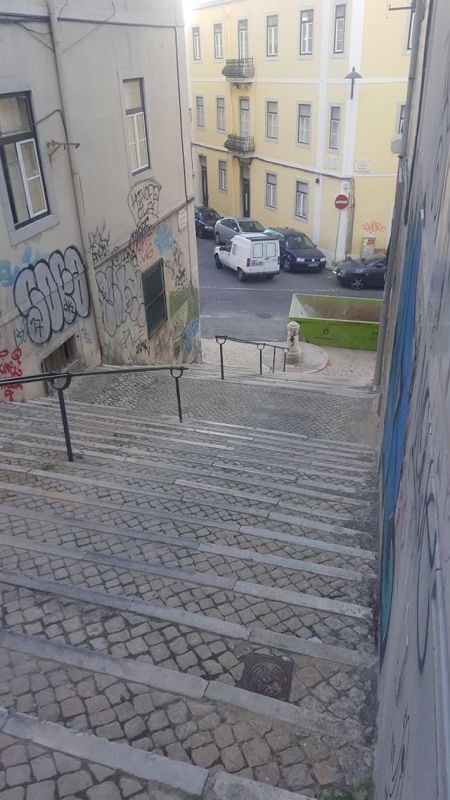 Duplex Damasceno Monteiro