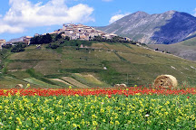 Umbria Con Me Day Tours, Assisi, Italy