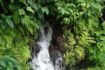 Boeri Lake, Morne Trois Pitons National Park, Dominica