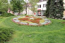 Viragora Flowerclock, Szekesfehervar, Hungary