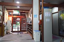Himenoyu, Hakone-machi, Japan