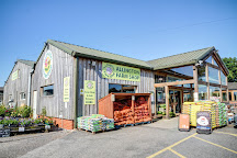 Allington Farm Shop, Chippenham, United Kingdom