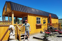 Montana Grizzly Encounter, Bozeman, United States