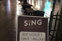 Sing Karaokes Namai, Vilnius, Lithuania