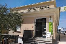 Museum Olei Histriae, Pula, Croatia