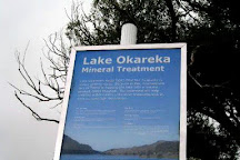 Lake Okareka Walkway, Rotorua, New Zealand
