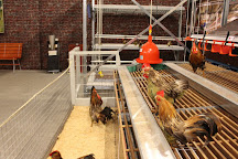 Dutch Poultry Museum, Barneveld, The Netherlands