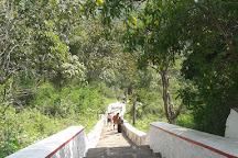 Shenbaga Thopu, Srivilliputhur, India