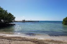 Playa Rosada, La Parguera, Puerto Rico