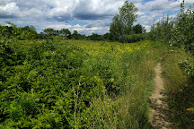 Bellamy River Wildlife Management Area, Dover, United States
