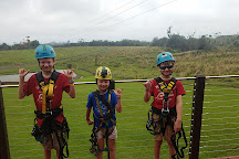 Zip Line Through Paradise, Hilo, United States