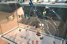 Museum of Natural Sciences, Brussels, Belgium