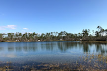 Long Pine Key, Everglades National Park, United States