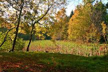 Donadea Forest Park, Kilcock, Ireland