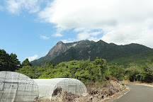 Mt. Mocchomudake, Yakushima-cho, Japan