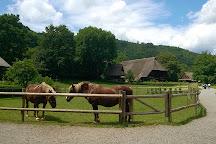 Black Forest Open Air Museum Vogtsbauernhof, Gutach im Schwarzwald, Germany