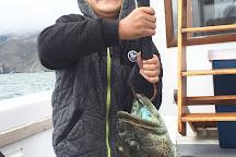 San Francisco Fishing Charter, San Francisco, United States