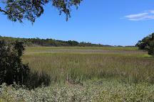 Clam Creek Picnic Area, Jekyll Island, United States