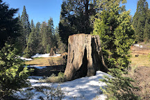 Big Stump Basin, Sequoia and Kings Canyon National Park, United States
