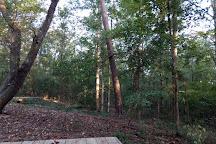 Kreher Preserve & Nature Center, Auburn, United States