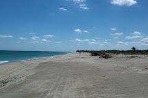 Hobe Sound National Wildlife Refuge, Hobe Sound, United States