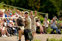 Hawk Conservancy Trust, Weyhill, United Kingdom