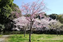 Negiuchi Historical Park, Matsudo, Japan