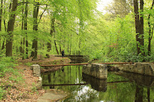 Waterloopbos, Marknesse, Holland