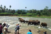 Roo Lanka Travels & Tours, Kandy, Sri Lanka