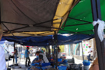 Flavor Teller Food Tour, Mazatlan, Mexico