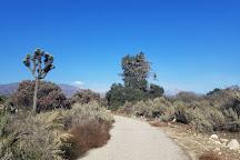 California Botanic Garden, Claremont, United States