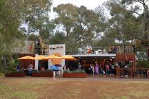 TreeClimb, Adelaide, Australia