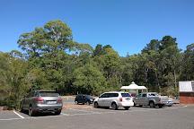 Hepburn Mineral Springs Reserve, Hepburn Springs, Australia