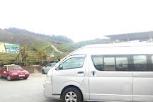 Rose Valley, Tanah Rata, Malaysia