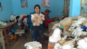 Alpasuri Textil 5