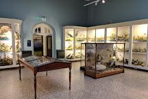 Norwich Castle Museum & Art Gallery, Norwich, United Kingdom