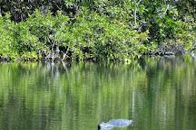 Greynolds Park, North Miami Beach, United States