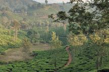Wayanad Tea Museum, Achooranam, India