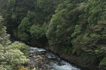 Whakapapa Nature Walk, Tongariro National Park, New Zealand
