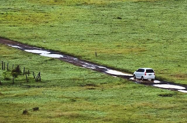 Baluran National Park