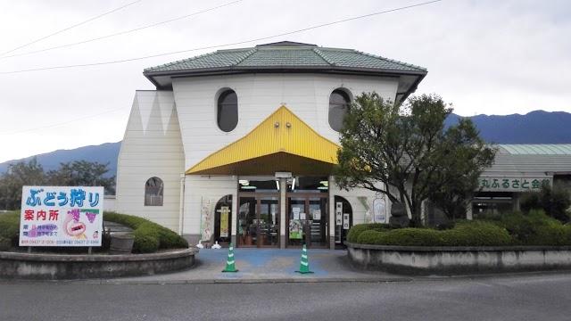 Tanushimaru Station