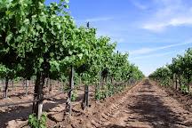 Luna Rossa Winery, Deming, United States