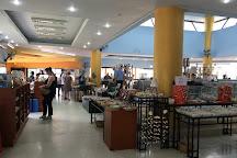Phuket Seashell Museum, Rawai, Thailand